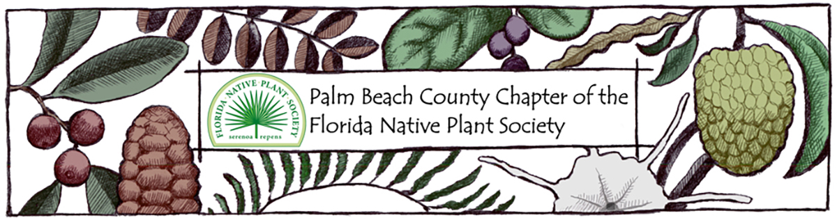 Palm Beach Chapter, Florida Native Plant Society